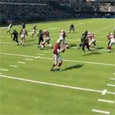 Phillyron of Madden 101 has posted a Madden 13 Tips breakdown where he shows a nano blitz out of the Nickel 2-4-5 DT. The name of the blitz is called...